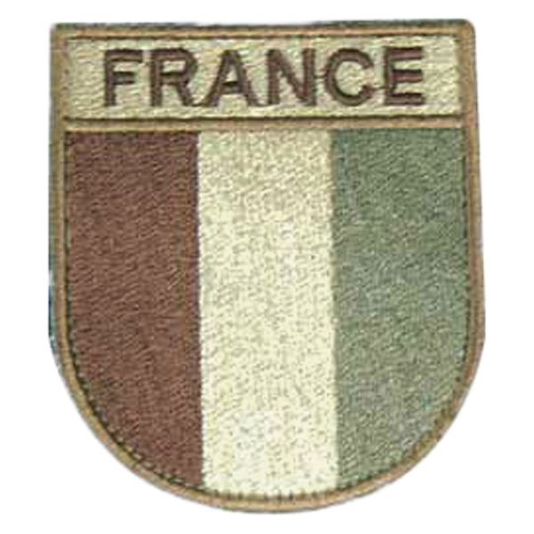 TOE Concept French Flag Arm Insignia desert
