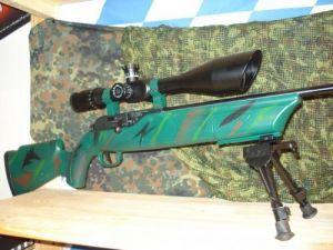 Walther ZF auf Air Magnum
