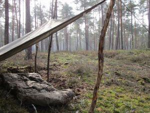 Shelter im Fichtenwald