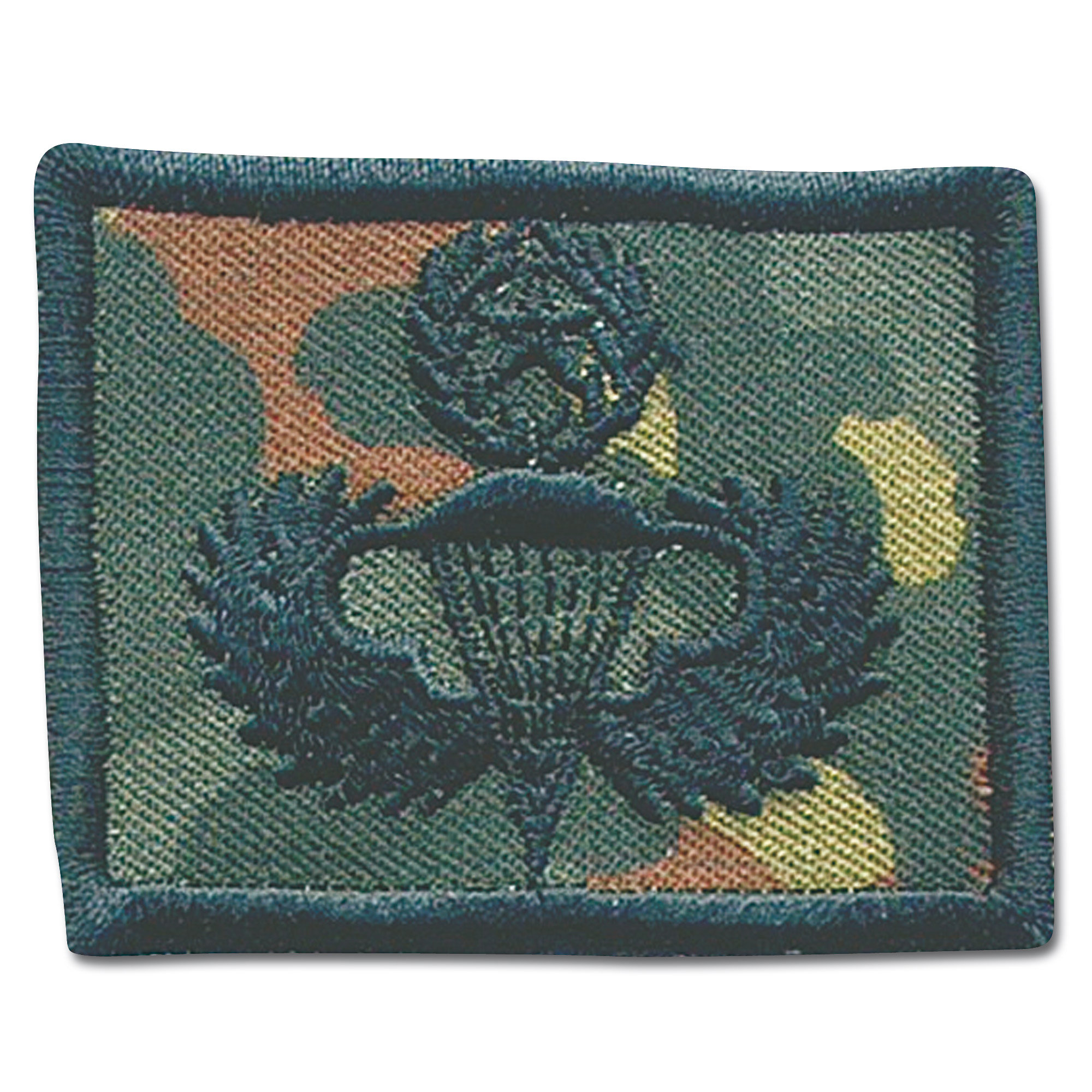 Patch U.S. Airborne Jump Master flecktarn