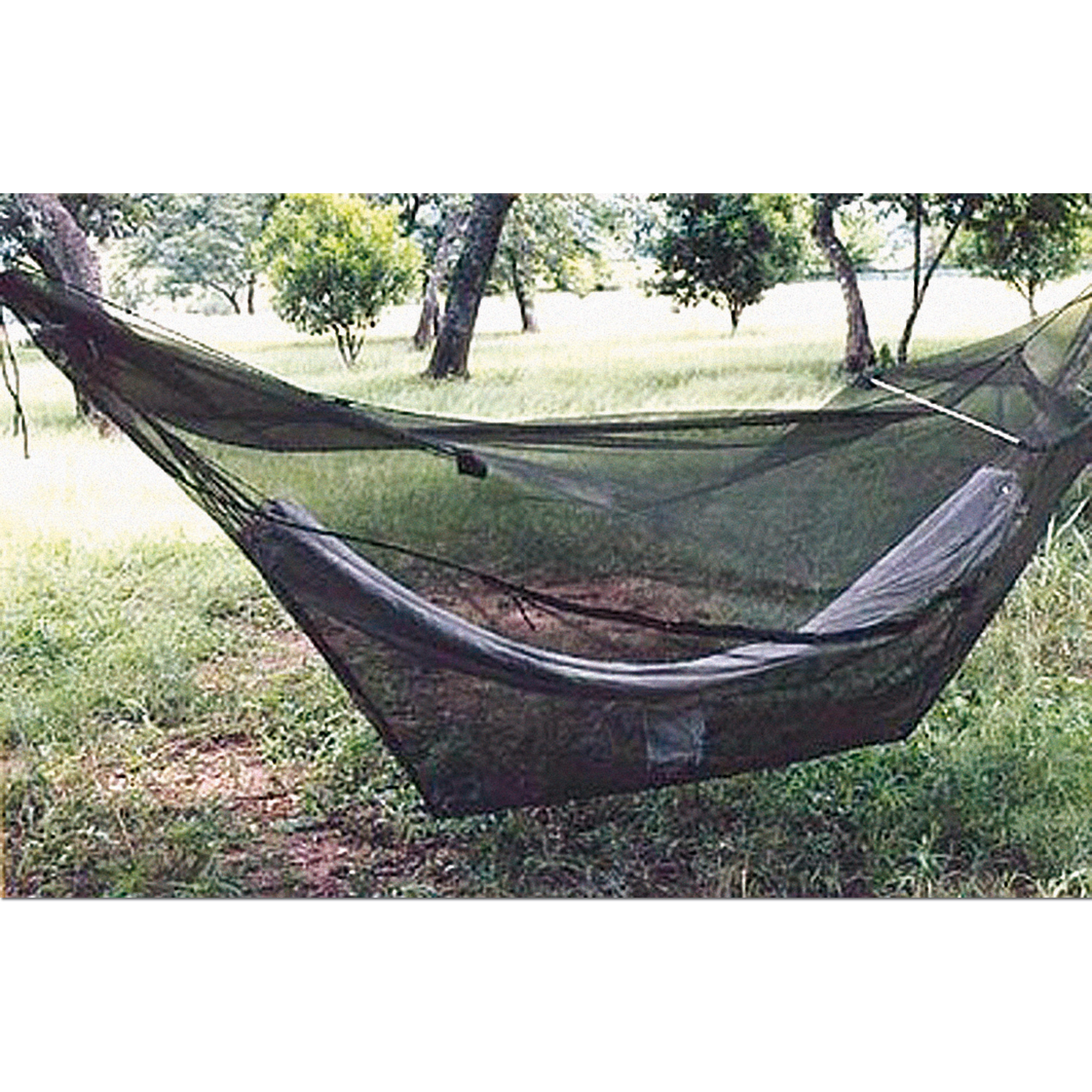 Mosquito Net Rain Forest