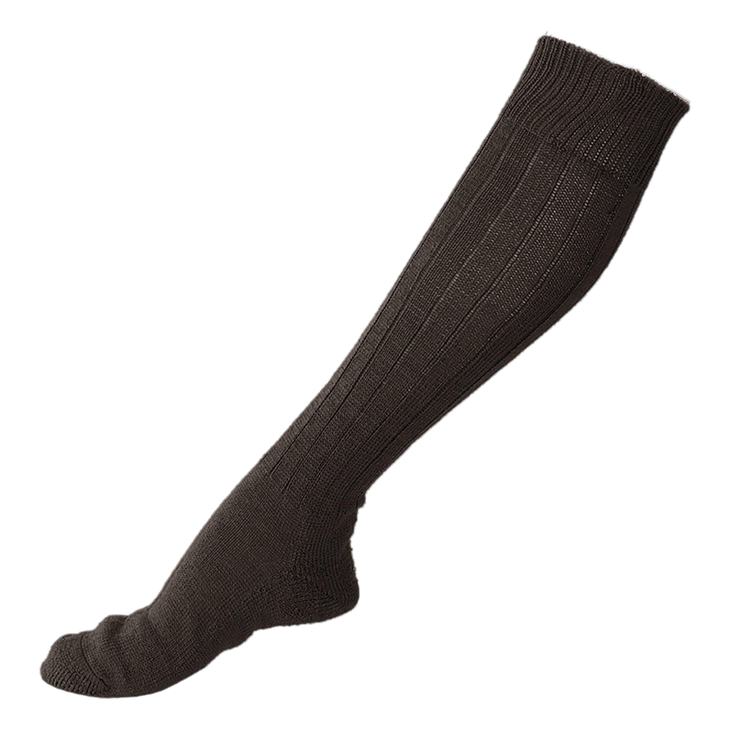 BW Boot Socks with Terry Sole black