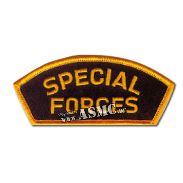 Special Forces Cap Insignia