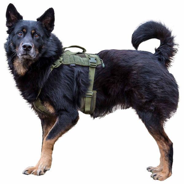Primal Gear Tactical Dog Harness olive