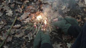 Einsatz im Wald
