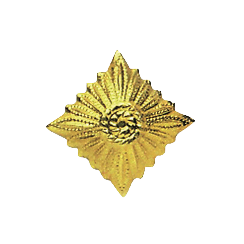 NVA Rank Insignia Star gold