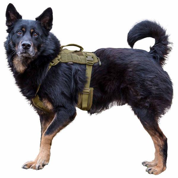 Primal Gear Tactical Dog Harness tan